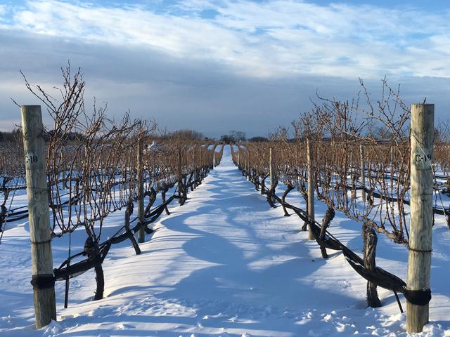 Penticton winter