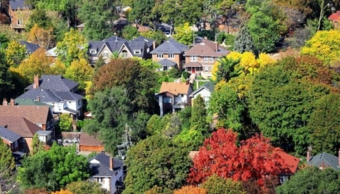 Crush Real Estate Real Estate